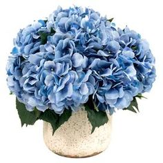 "Bring a touch of garden-chic style to your home with this blooming faux hydrangea arrangement, nestled in a weathered ceramic planter.  Product: Faux floral arrangement Construction Material: Silk, polyester and ceramic Color: Blue, green and cream Features:  Weathered planter Includes faux hydrangeas Dimensions: 20"" H x 16"" Diameter"