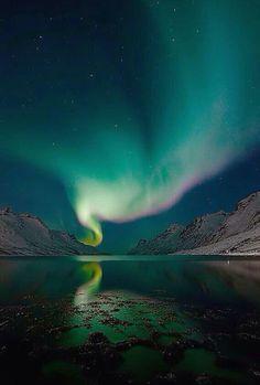 Aurora borealis ~ Iceland