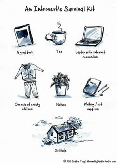 An introvert's survival kit: a good book; tea; laptop with internet connection; oversized, comfy clothes; nature; writing/art supplies; solitude. So me!