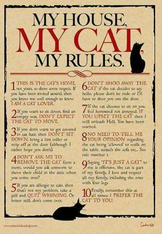 My house. My cat. Her rules really.