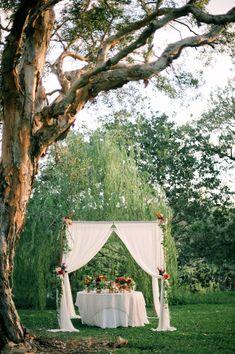 cake table for a backyard wedding