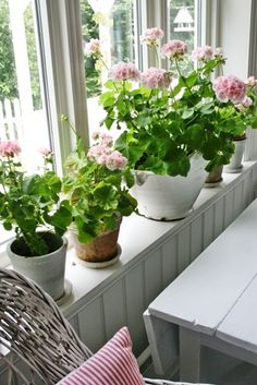 Geraniums on the window sill Cozy Cottage, Cottage Living, Dream Garden, Home And Garden, Pink Geranium, Vibeke Design, Cottage Style Decor, Home Interior, Houseplants