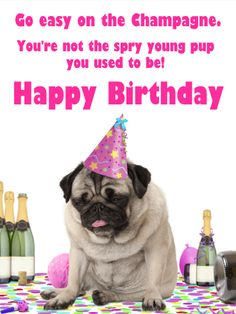 Send Free Go Easy on the Champagne - Funny Birthday Card to Loved Ones on Birthday & Greeting Cards by Davia. It's free, and you also can use your own customized birthday calendar and birthday reminders. Happy Birthday Wishes For A Friend, Happy Birthday For Him, Girl Birthday Cards, Birthday Wishes Quotes, Birthday Greeting Cards, Birthday Greetings, Birthday Stuff, Birthday Reminder, Birthday Calendar
