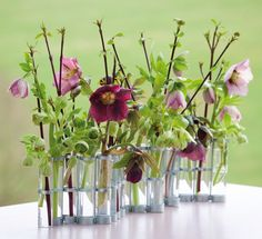 Create beautiful late spring floristry arrangements with Sarah Raven's guide. Learn to force branches and combine with woodland flowers.