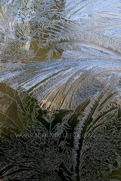 Eisblumen, Eis am Fenster, Winter, Eis, Schnee, Kälte, Eiskristalle - Fotoagentur | Bildagentur Pixelzauber - Fotos, Fotografien und Bilder...