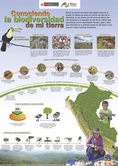 infografia-biodiversidad by Mario Quiroz  via Slideshare