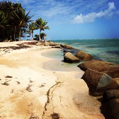 Gran Melia Resort in Rio Grande, Puerto Rico