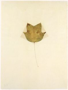 Beuys - Tulipidendron lyriofolium, 1948
