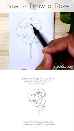 How to Draw a Rose : Step by Step for Beginners Drawing Beginners Draw Rose rose Drawing Step Roses Drawing Tutorial, Flower Drawing Tutorials, Drawing Tips, Art Tutorials, Ideas For Drawing, Drawing Tutorials For Beginners, Drawing Journal, Card Drawing, Rose Tutorial