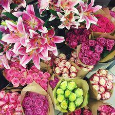 Flowers flowers flowers ❀