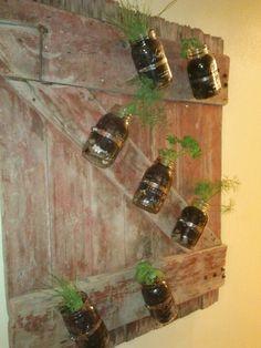 Mason jar planters on a reclaimed barn door
