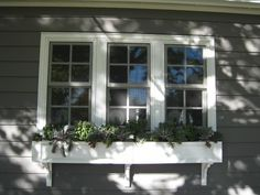 dark window/light trim