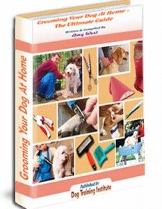 """""""Grooming Your Dog At Home""""  will surely make your neighbors envy you!  The Ultimate Dog Grooming Book!"""