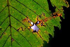 #autumn2017#myphoto