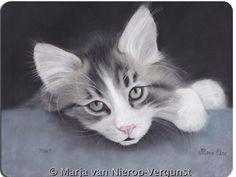 Werk van Marja van Nierop