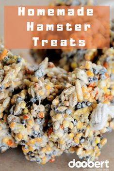 This recipe as it is should make enough treats to feed to a hamster for several weeks because they should be fed a limited amount of treats. Diy Hamster Food, Hamster Life, Hamster Toys, Hamster Treats, Pet Treats, Hamster Stuff, Hamster Clothes, Hamster Names, Hamster Habitat