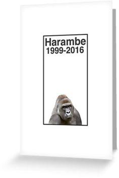 Rip Harambe 1999-2016