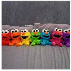 Elmo in all the colors of the rainbow Love Rainbow, Taste The Rainbow, Over The Rainbow, Rainbow Colors, Rainbow Baby, Rainbow Stuff, Rainbow Toys, World Of Color, Color Of Life