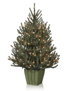 Tabletop Christmas Tree from Balsam Hill.