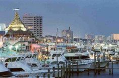 The Destin Harbor which is located in the heart of downtown Destin, offers a lot of entertaining things to do. There are a number of outstanding seafood restaurants such as Harbor Docks www.harbordocks.com and Dewey Destins www.destinseafood.com where you can enjoy some the freshest seafood the Gulf of Mexico has to offer. The night life is always a lot of fun with nightclubs.