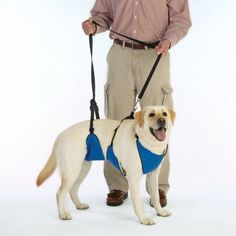 $41.98-$71.24 Here?s a safe and easy way to give pets with limited mobility a boost up the stairs, into bed, or into cars. Our Guardian Gear? 4-in-1 Lift & Leads are constructed of 600-denier nylon with contoured chest and back supports lined in soft fleece for maximum comfort. Allows convalescing, older pets, and those with arthritis, hip dysplasia or other disabilities to go everywhere! Use the ...