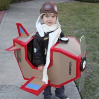Super Sweet Airplane Costume- great for the costume parade