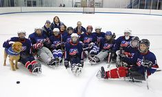Women's Sled Hockey Program is still in its infancy, but there is no questioning the desire and determination these hockey players have for their sport. Sledge Hockey, Infancy, Hockey Players, Olympians, Determination, Nhl, Football Helmets, Strong, This Or That Questions