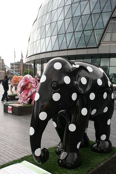 Yes I'm seeing Pink Elephants!!! And spots before my eyes...... NOW WHAT????