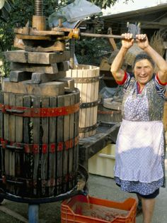 A Local Winemaker Pressing Her Grapes at the Cantina, Torano Nuovo, Abruzzi, Italy
