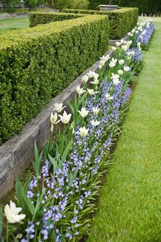 20 Fascinating Garden Fence Ideas to Add Privacy for Your Home Talkdecor is part of Garden hedges - Having a great home front yard and porch is quite worthy to give good impression from your guests or people who walk through in front of your house Back Gardens, Outdoor Gardens, Garden Hedges, Fence Garden, Garden Ideas Near Fence, Garden Retaining Walls, Garden Edging Ideas Cheap, Rock Retaining Wall, Front Yard Garden Design