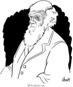 Charles Darwin, watkanjewel.com Niels Vergouwen