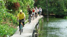 #tipvanamber  Voor de echte liefhebbers is er deze 9 uur durende fietstocht. Omdat we meer tijd hebben is er de gelegenheid om Bangkok vanuit verschillende invalshoeken en op verschillende manieren te verkennen. Met de boemeltrein vertrekken we naar de oostelijke rand van Bangkok. Per fiets ontdekken we een uitgestrekt gebied, waar je je op het platteland …