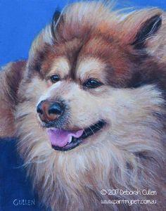 DOG PORTRAIT         Saba, Finnish Lapphund Acrylic on Canvas, 20.32cm x 25.40cm (08″ x 10″)