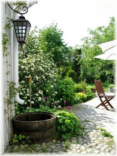 outdoors garden
