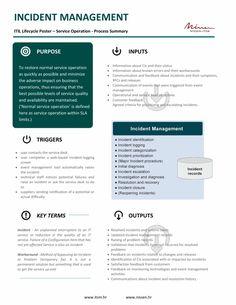 It Service Desk, It Service Management, Risk Management Strategies, Program Management, Change Management, Talent Management, Business Management, Technology Roadmap, Technology Infrastructure