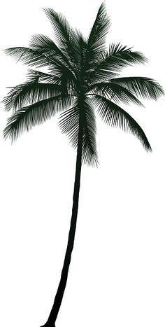 Palm tree tattoo side ribs ideas for 2019 Tree Tattoo Side, Palm Tree Tattoo Ankle, Tree Sleeve Tattoo, Pine Tree Tattoo, Side Tattoos, Sleeve Tattoos, Palm Tree Tattoos, Fox Tattoos, Deer Tattoo