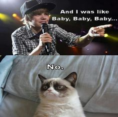 Grumpy Cat doesn't like Justin Beiber. Good.