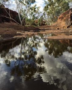 Wunna Munna #Newman #aboriginalrockart #waterhole #remote #roadtrip #travel #wunnamunna #reflections #pilbaralife #swimmingthroughtheoutback #australia #australianoutback #wanderlust #sunburntcountry #easterbreak16 by outabouttravel http://www.australiaunwrapped.com/ #AustraliaUnwrapped