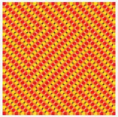 Can you believe your eyes? Using your scroll bar or cursor, move the picture up and down.