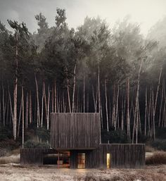 a stacked, black #timber house envisioned by architectural designer gluzdakova maria⠀⠀ ⠀⠀ see more #architecture in the #forest on #designboom