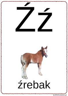 alfabet dla dzieci Polish Language, Bingo, Kids Learning, Education, Geography, Full Bed Loft, Speech Language Therapy, Onderwijs, Learning