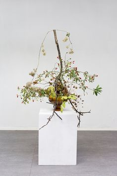 martina della valle - onefloweroneleaf Ikebana, Flower Installation, Artistic Installation, Creative Flower Arrangements, Floral Arrangements, Hotel Flowers, Modern Planters, Flowering Trees, Abstract Flowers