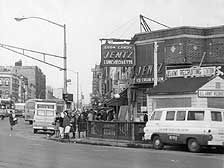 """Flatbush Avenue to """"The Junction"""" at Nostrand Avenue in 1895"""
