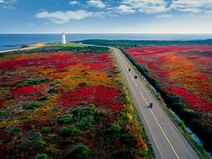 Scenic Roads in New Brunswick Canada