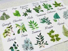 Cartes de mariage botanique, tentes de Table bois, cartes de mariage arbre, feuille de cartes de mariage