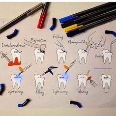 Adamant Dental Surgery Food Recipes For - Cosas Que Hacer Para Una Boca Sana Dental Assistant Study, Dental Hygiene Student, Dental Humor, Dental Hygienist, Dental Facts, Dental World, Dental Life, Dental Health, Oral Health