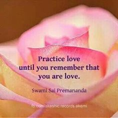 Practice Love until you remember that you are love. - Swami Sai Premananda