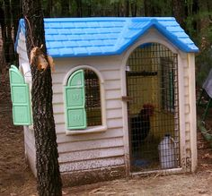 Playhouse repurposed into small chicken coop; I knew I should have kept Mollie's old playhouse!