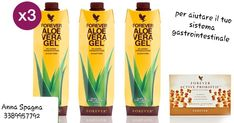 Forever Living Products, Pint Glass, Aloe Vera, Mario, Anna, Beer, Root Beer, Ale, Beer Glassware