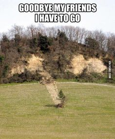 Run Forest Run! - 9GAG